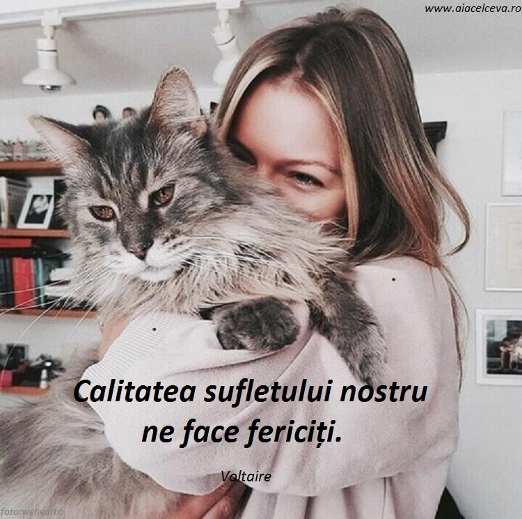 Suflet_aiacelceva.ro